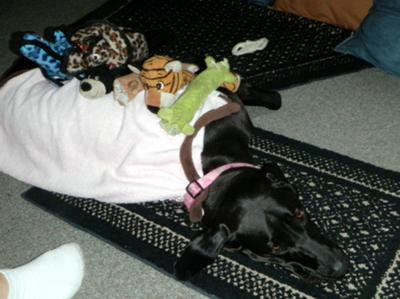 Napping with my toys